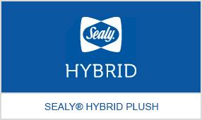 hybrid_2